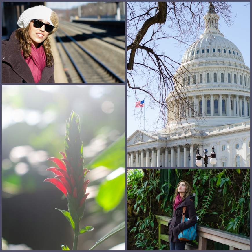 DC, Capital and Botanical Gardens