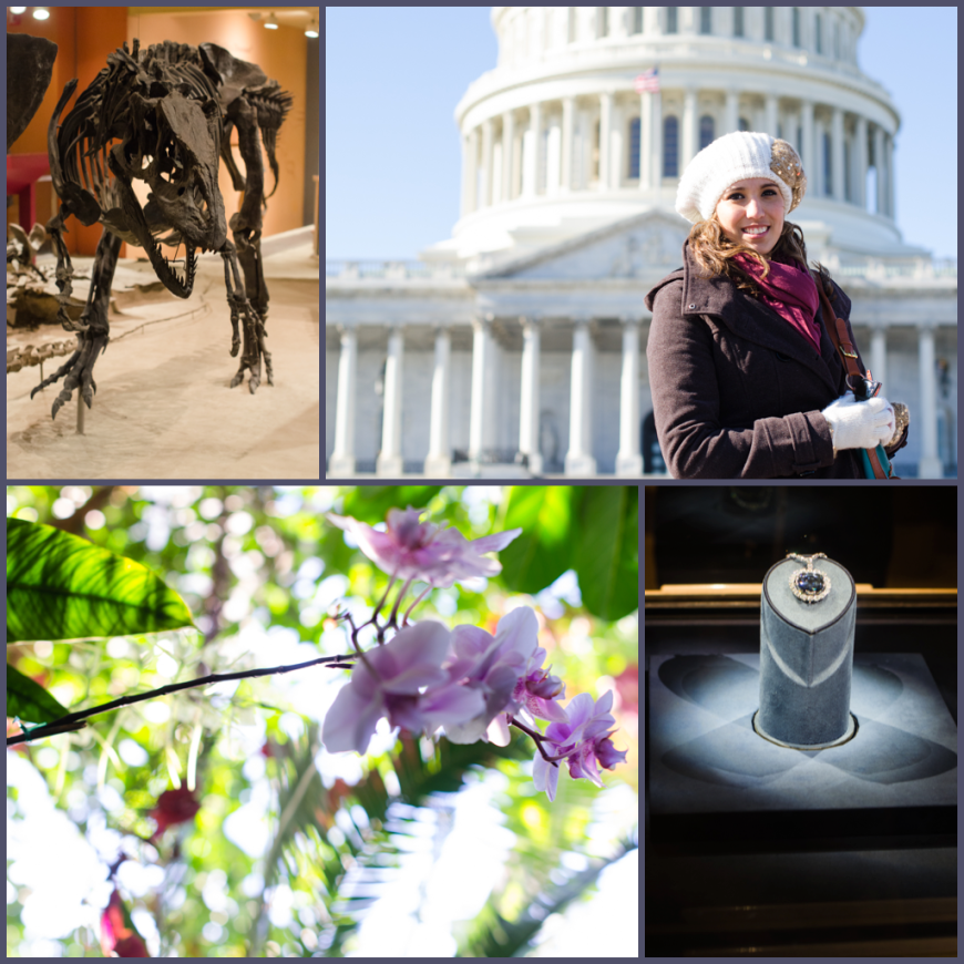 DC, Botanical Gardens, and Smithsonian