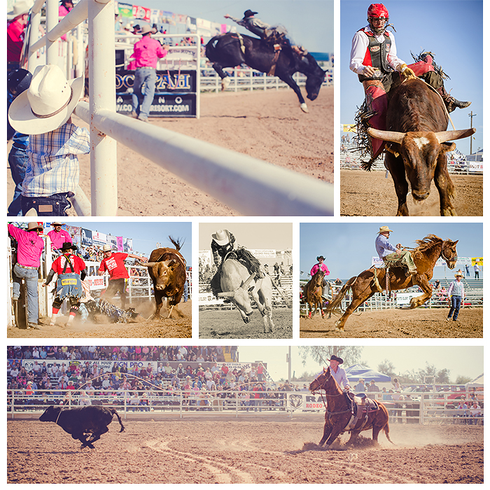 Arizona Rodeo