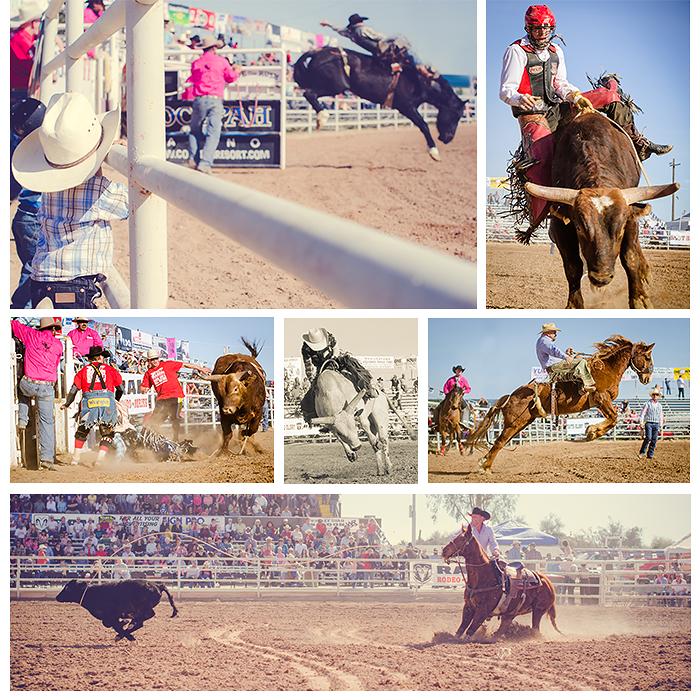 Arizona Rodeo