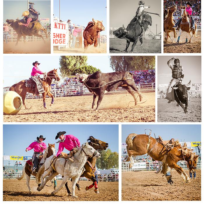 Arizona Cowboy Photography