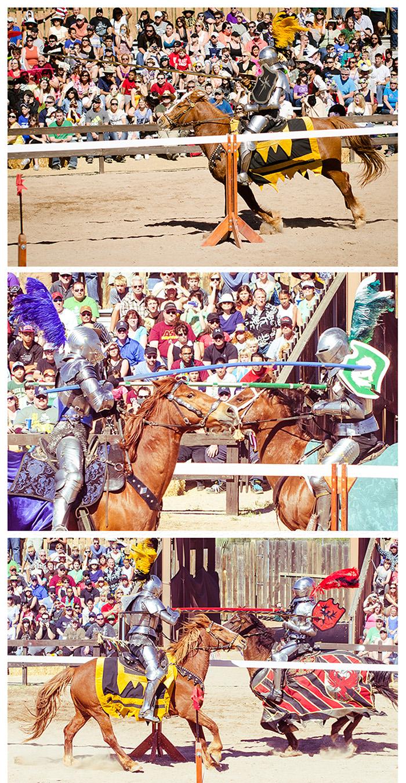 Renaissance Festival 5